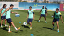 Puyol, Cesc, Pedro, Busquets and Song in training. PHOTO: MIGUEL RUIZ - FCB